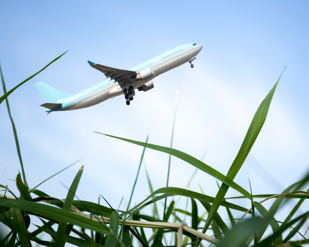 Aviation and climate change – Meeting with Philippe Fonta, an expert in sustainability